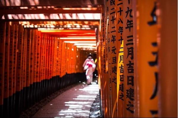 ngôi đền Fushimi Inari